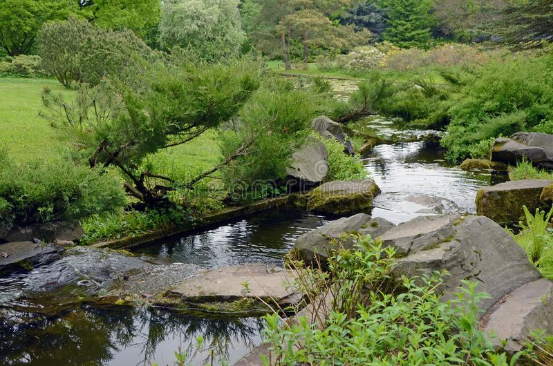 Waterstroom in Japanse Tuin stock foto's