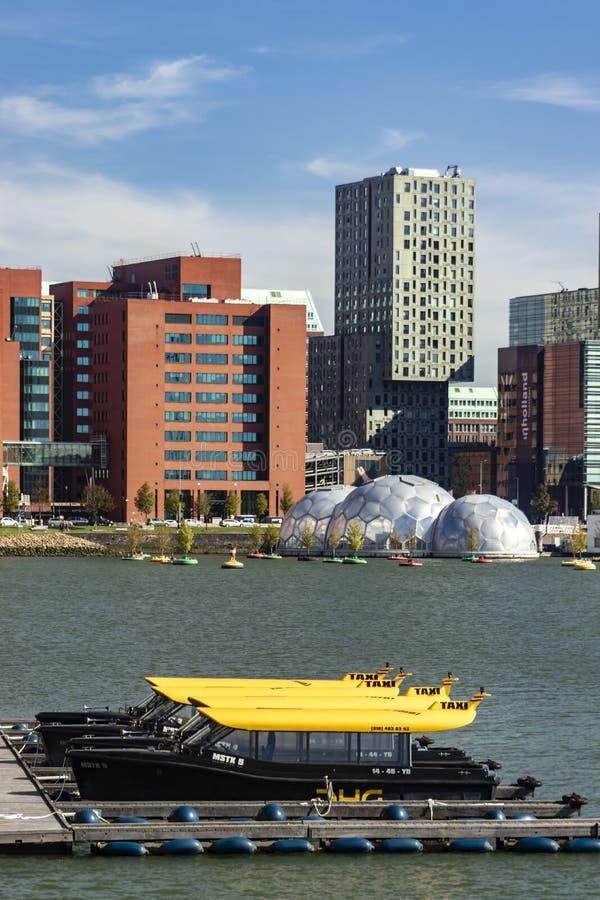 Watertaxiparkeren in Rijnhaven Rotterdam royalty-vrije stock foto's