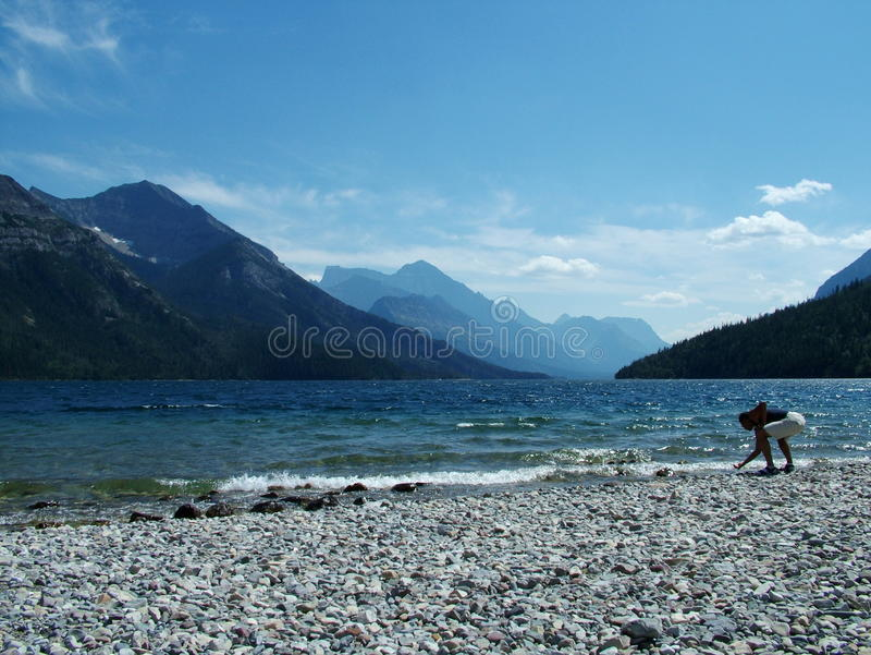 Waterton Beach Comber royalty free stock photography