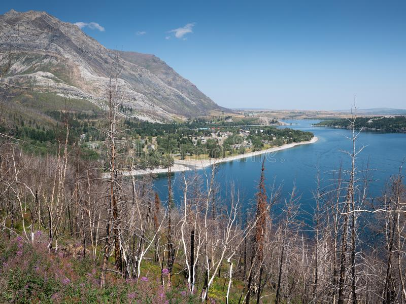 Waterton Lakes National Park, Alberta, Canada royalty free stock photos