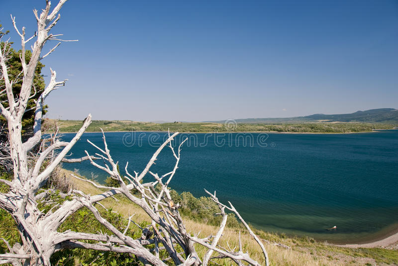 Waterton See-Nationalpark lizenzfreie stockfotografie