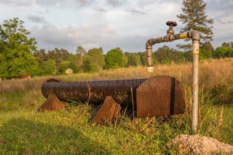 Watertrog in Weiland op Landbouwbedrijf royalty-vrije stock foto's