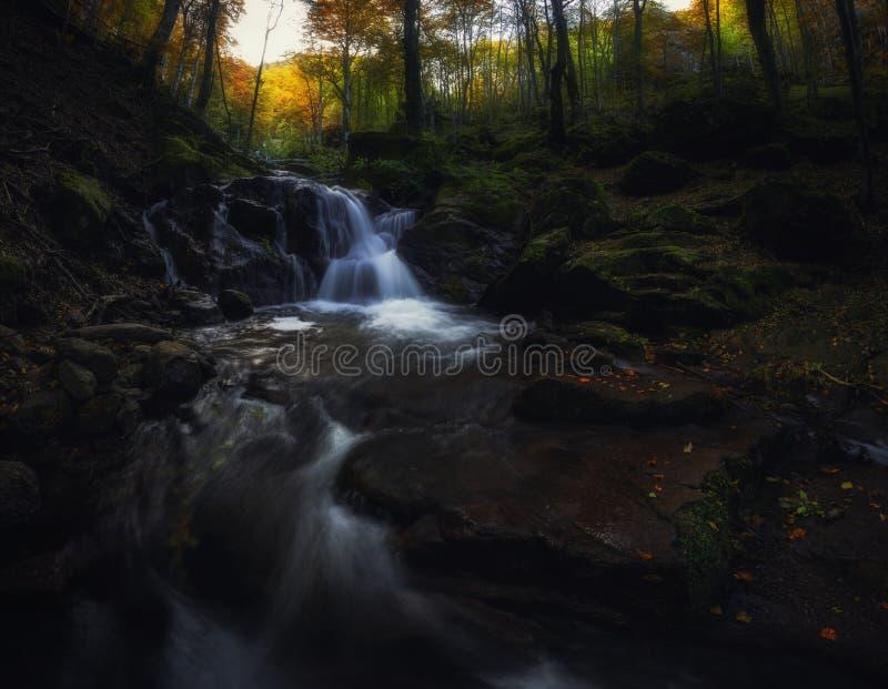 Waterval of berg de lente in de herfstbos royalty-vrije stock foto's