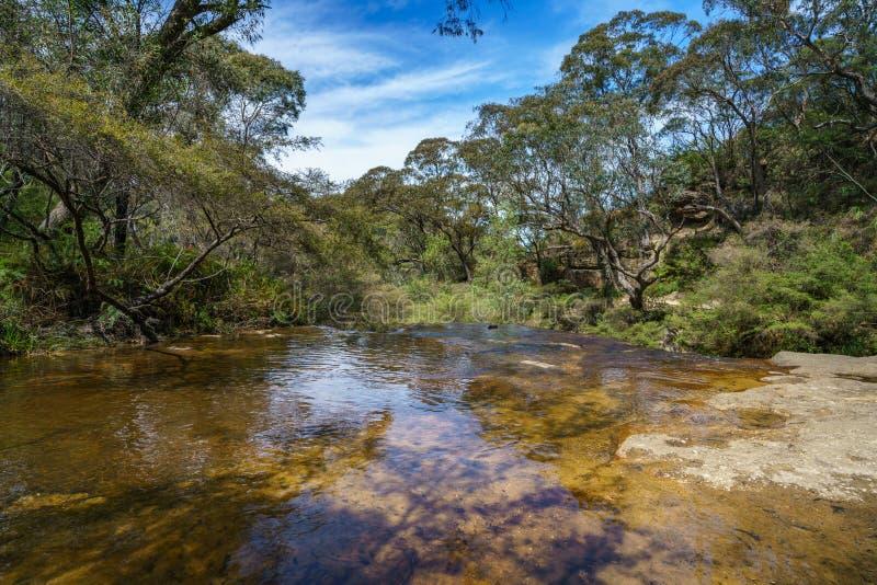 Waterval bij het huilen van rots het lopen spoor, blauw bergen nationaal park, Australië 1 royalty-vrije stock fotografie
