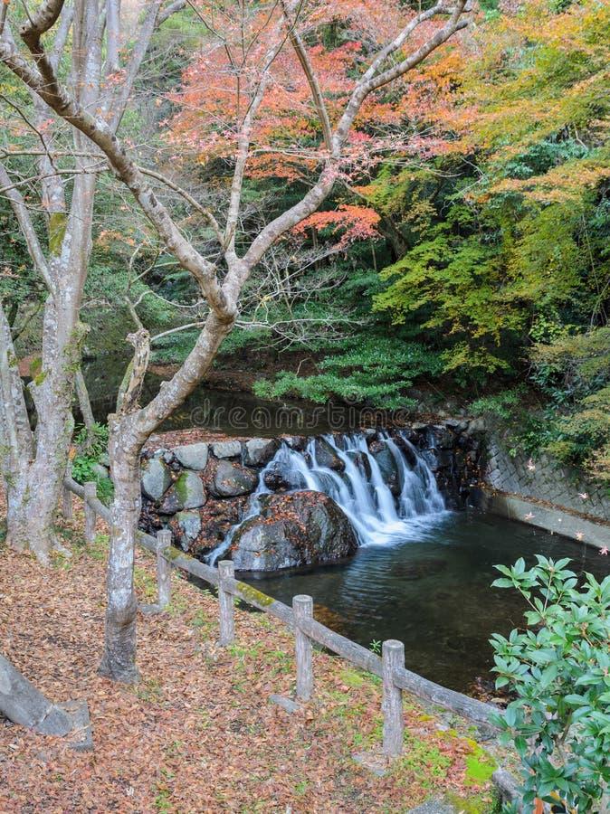 Waterval bij het nationale park van Minoo of van Minoh in de herfst, Osaka, Jap royalty-vrije stock foto