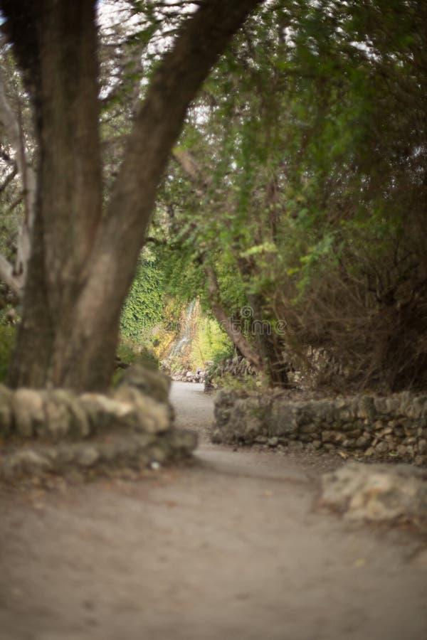 Waterval bij Japanse tuin royalty-vrije stock foto's