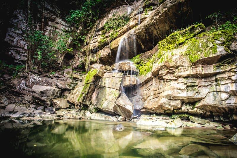 Waterval bij tropisch regenwoud in Thailand in koel seizoen stock foto