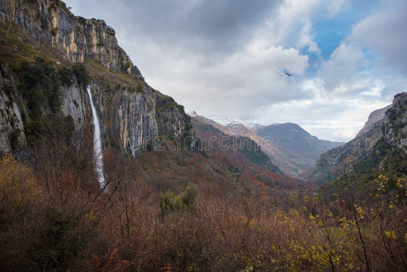 Waterval binnen de groene vallei stock foto