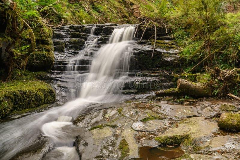 Waterval in blaen-Y, Wales, het UK stock afbeeldingen