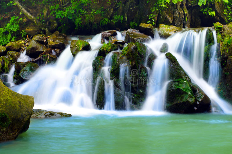 Waterval, bos royalty-vrije stock foto