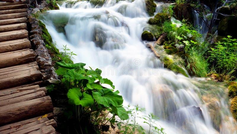 Waterval in bos, Kroatië, plitvicemeer stock afbeelding