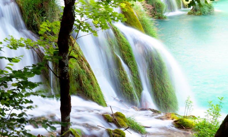 Waterval in bos, Kroatië, plitvicemeer royalty-vrije stock foto