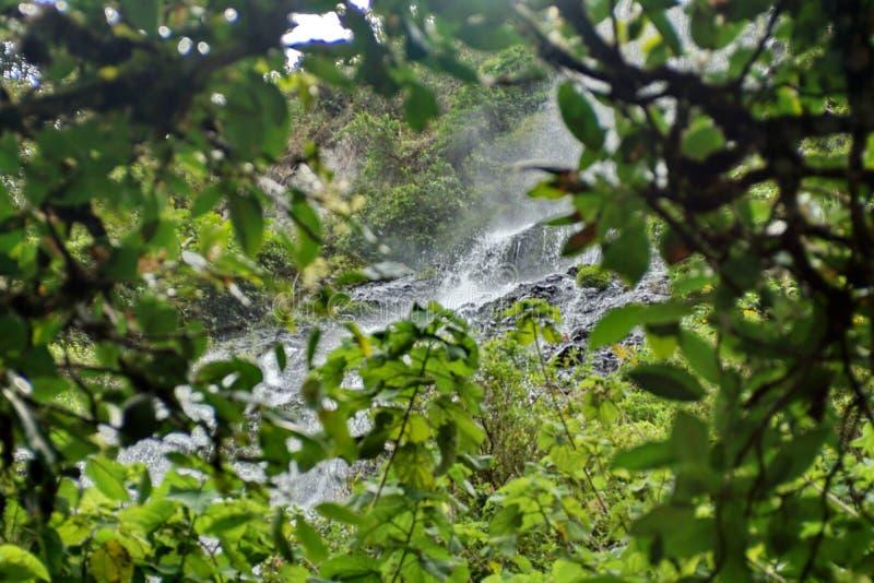 Waterval boven Banos, Ecuador royalty-vrije stock foto