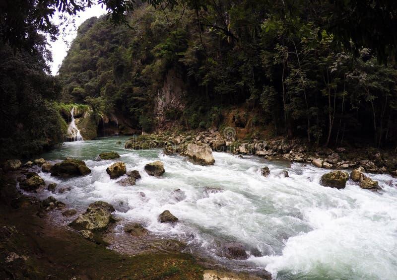 Waterval in cahabonrivier guatemala stock foto