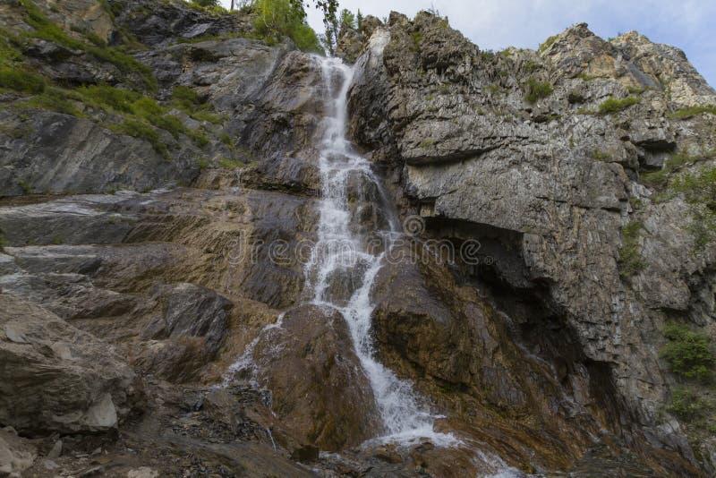 Waterval in de bergen van Altay royalty-vrije stock fotografie