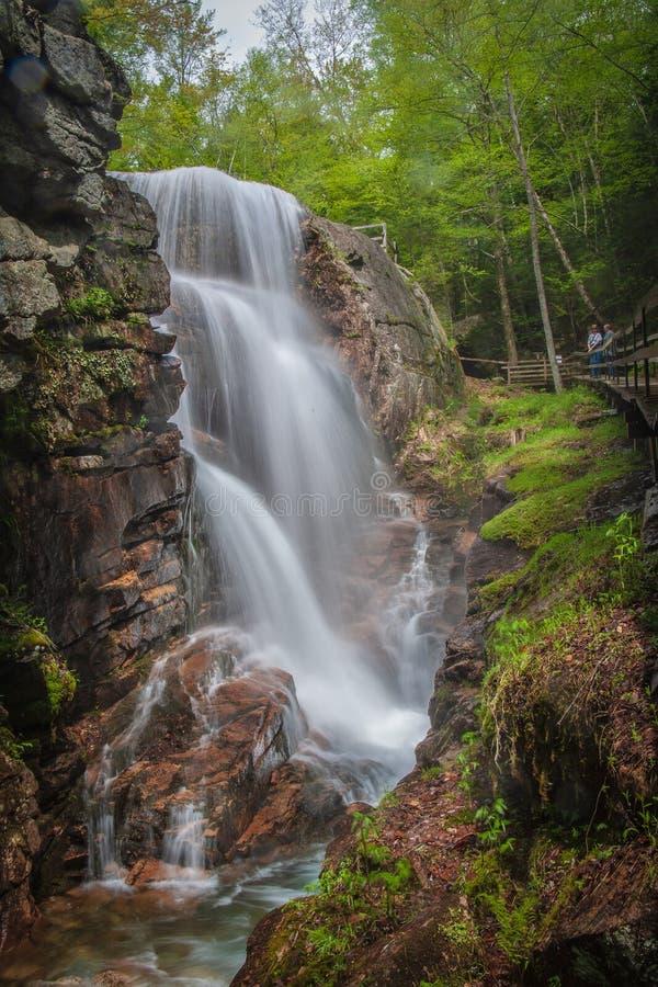 Waterval in de Gootkloof bij Franconia-het Park van de Staat NH royalty-vrije stock afbeeldingen