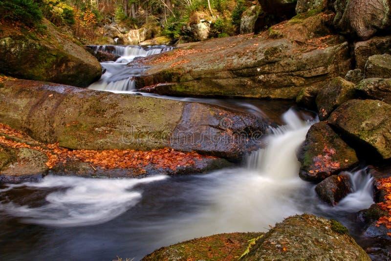 Waterval in de herfstbos royalty-vrije stock afbeeldingen