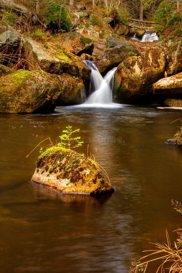 Waterval in de herfstbos royalty-vrije stock fotografie