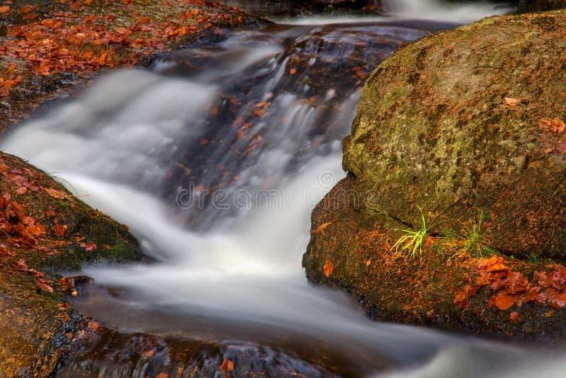 Waterval in de herfstbos royalty-vrije stock afbeelding