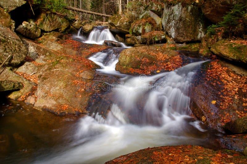 Waterval in de herfstbos stock foto's