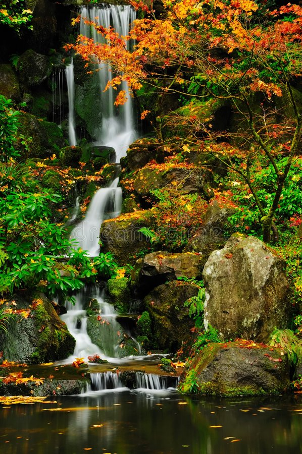 Waterval in de herfstclose-up royalty-vrije stock foto