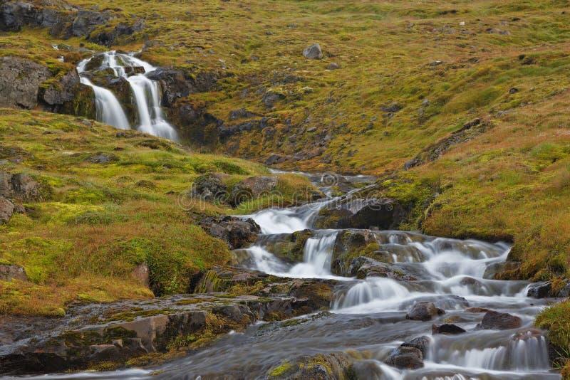 Waterval, de Kust van het Zuiden, IJsland royalty-vrije stock foto's