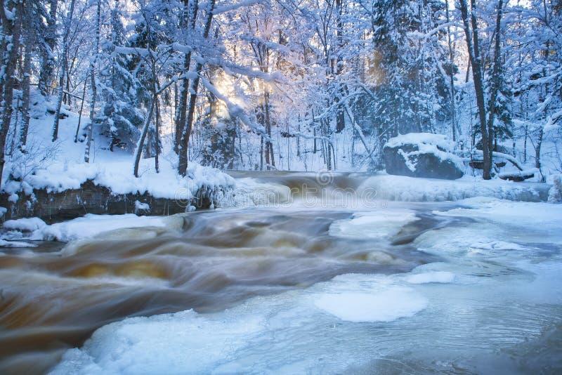Waterval in de winter stock foto's