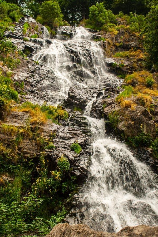 Waterval dichtbij Todtnau, in het Zwarte Bos in Duitsland stock afbeeldingen