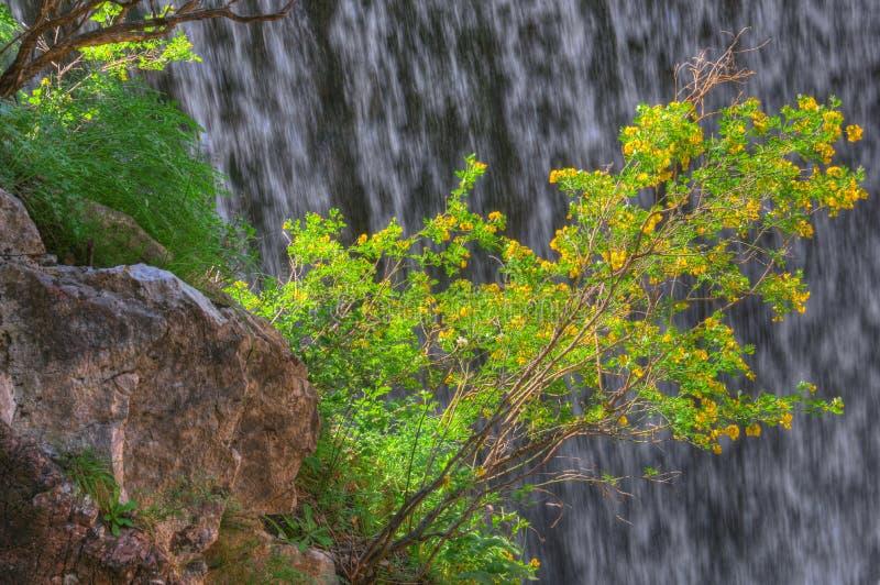 Waterval dichtbij Trikala, Griekenland - de lentebeeld, detail stock fotografie