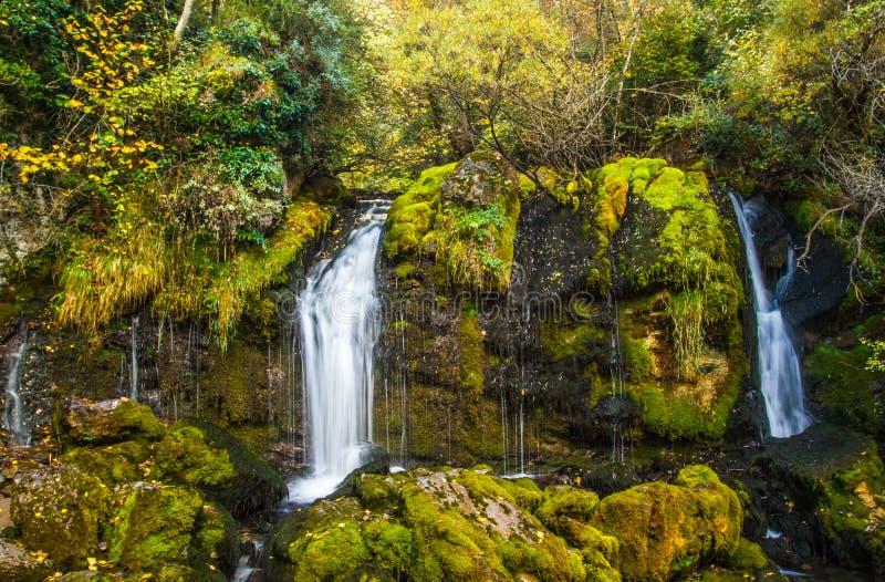 Download Waterval Dichte Omhooggaand In Bos Stock Afbeelding - Afbeelding bestaande uit klippen, kalmte: 39108775
