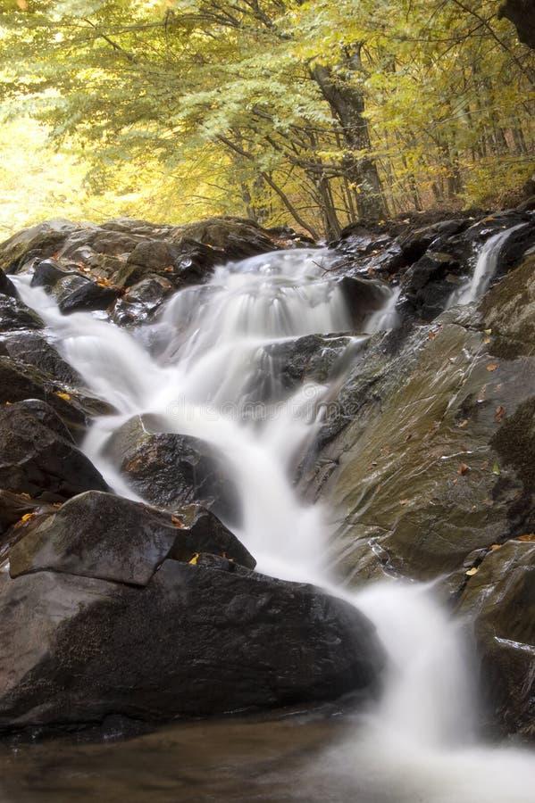 Waterval in een bos met kleurrijke bomen royalty-vrije stock foto