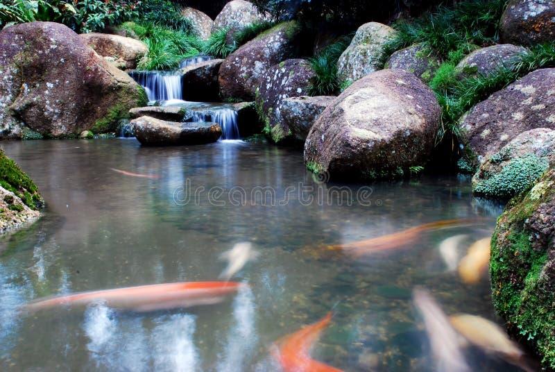 Waterval en landschappen stock afbeelding