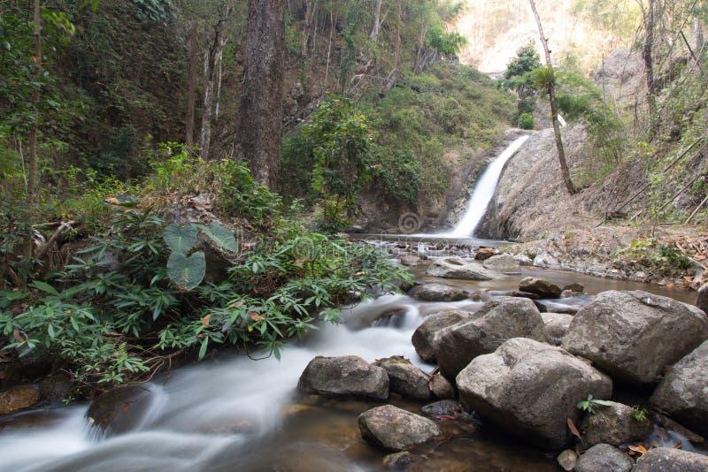 Waterval en rotsvoorgrond in het bos royalty-vrije stock fotografie