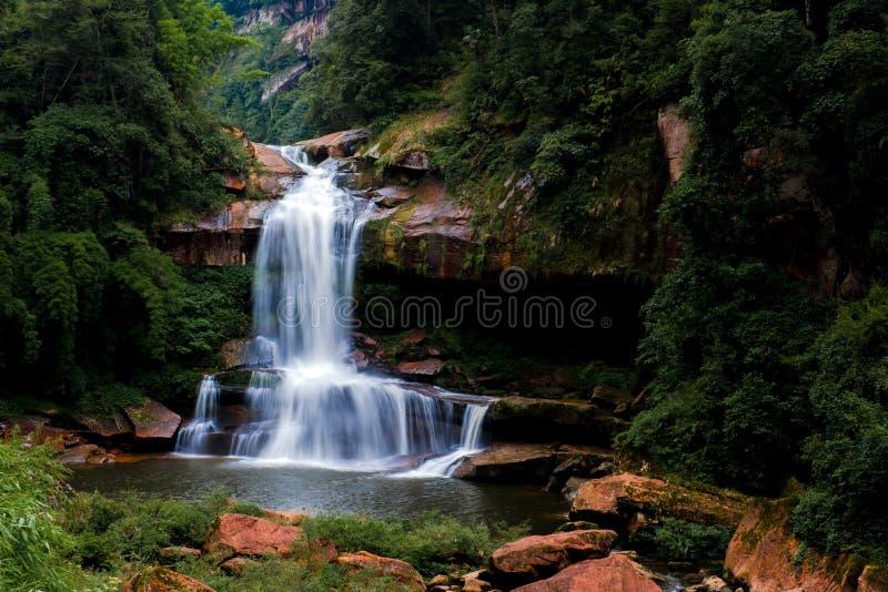 Waterval en stroom in bos stock afbeeldingen