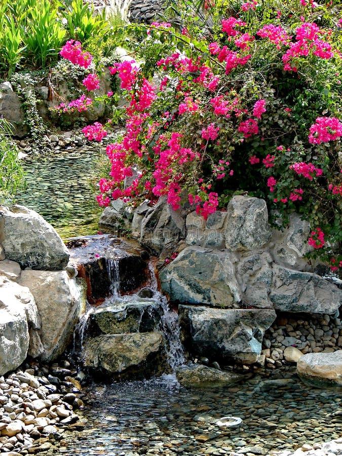Waterval en tropische tuin in patio spa stock foto