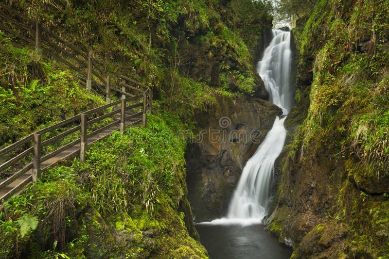 Waterval in Glenariff Forest Park in Noord-Ierland royalty-vrije stock afbeelding
