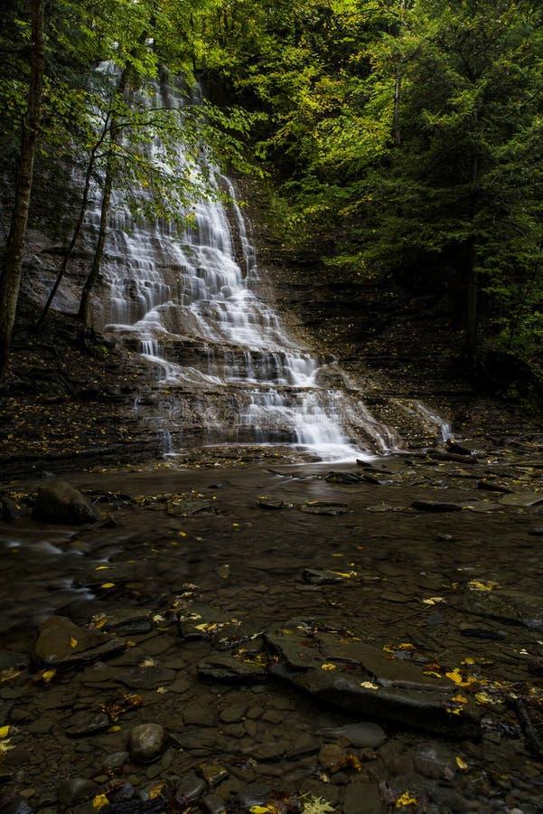 Waterval - Grimes-Nauwe vallei - New York royalty-vrije stock afbeelding