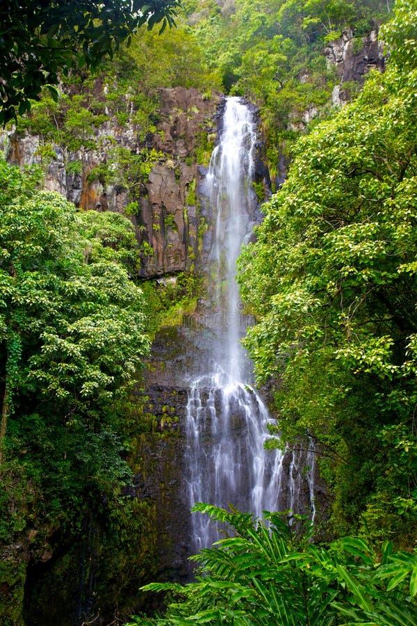 Waterval in Hawaï stock foto's