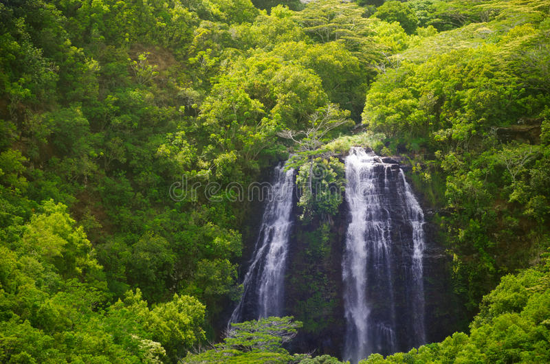 Waterval in Hawaï, Kauai royalty-vrije stock fotografie