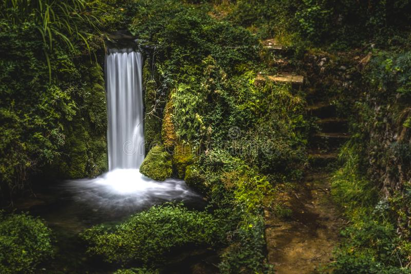 Waterval in het Lush Forest stock foto