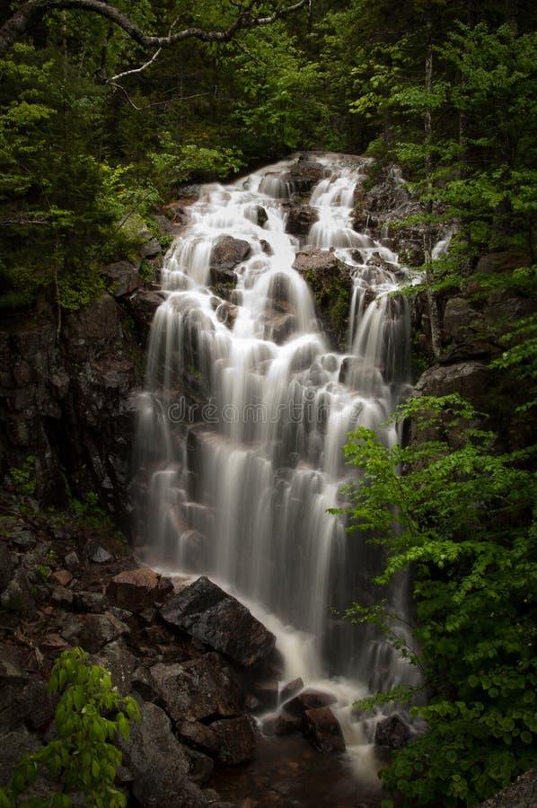 Waterval, het Nationale Park van Acadia stock fotografie