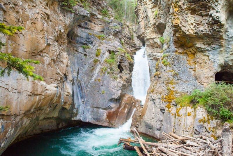 Waterval in het nationale park van de johnstoncanion banff stock fotografie