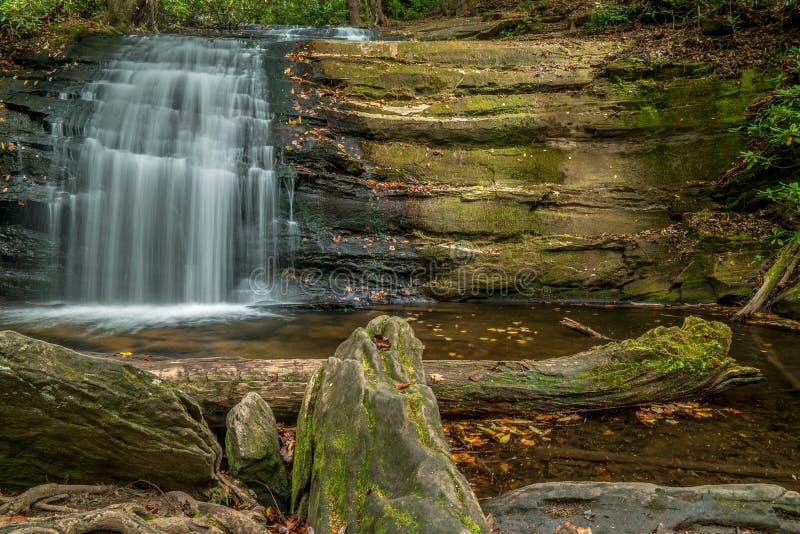 Waterval in het Noorden Georgia Mountains royalty-vrije stock afbeelding