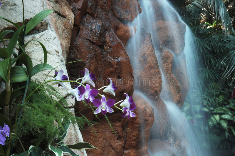 Waterval met bloemenlandschap royalty-vrije stock afbeelding