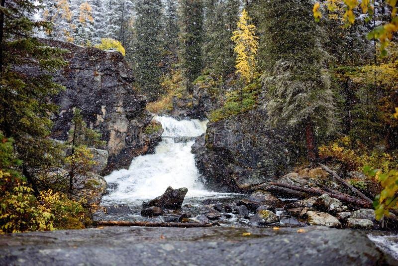 Waterval in Oost-Kazachstan, Altai-bergen royalty-vrije stock foto