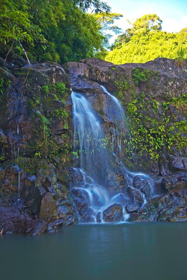 Waterval op de Weg aan Hana Maui Hawaii royalty-vrije stock foto's