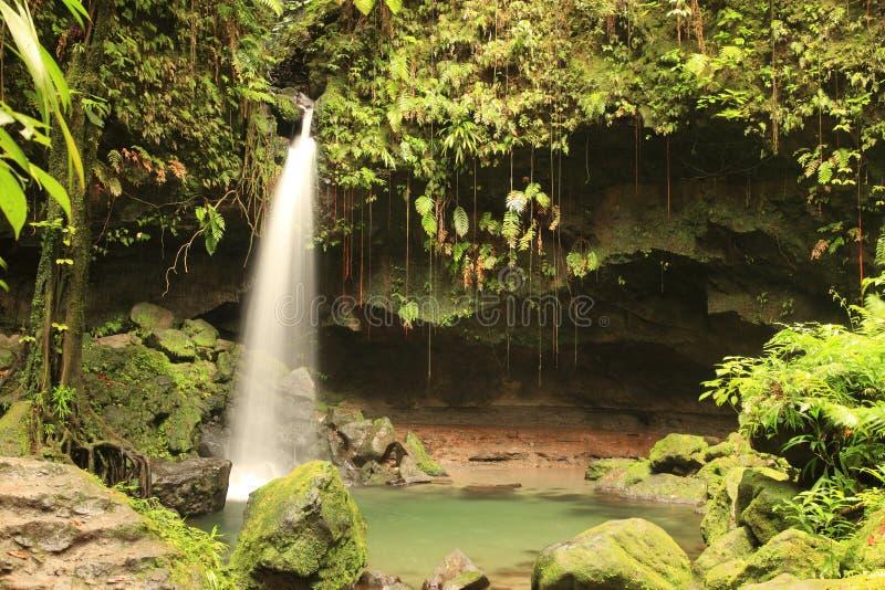 Waterval op Dominica royalty-vrije stock fotografie