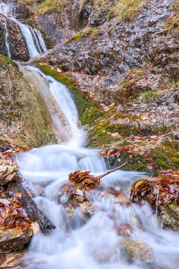 Waterval op een stroom in de herfstbos royalty-vrije stock afbeelding