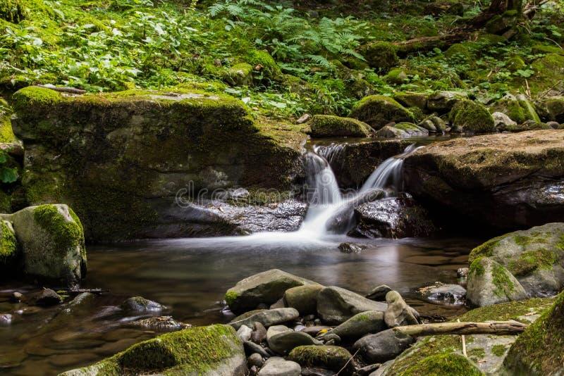 Waterval op het park van Foreste Casentinesi, Italië royalty-vrije stock foto's