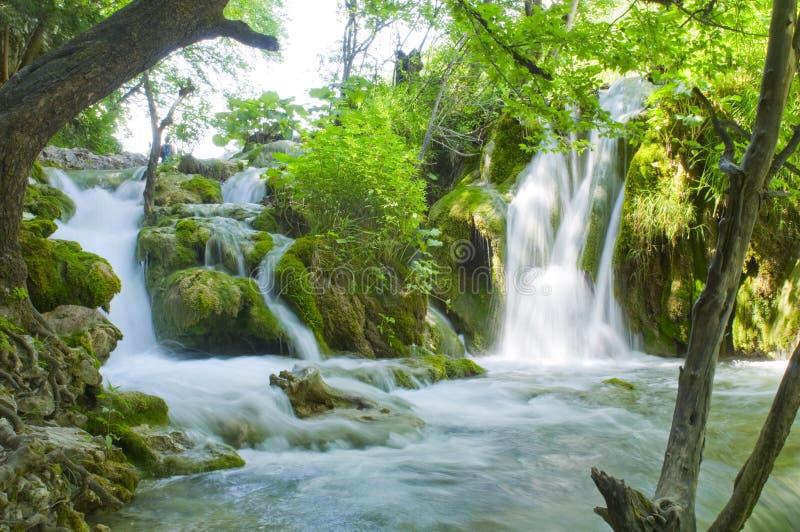 Waterval op Plitvice-meren - nationaal park van Kroatië royalty-vrije stock foto